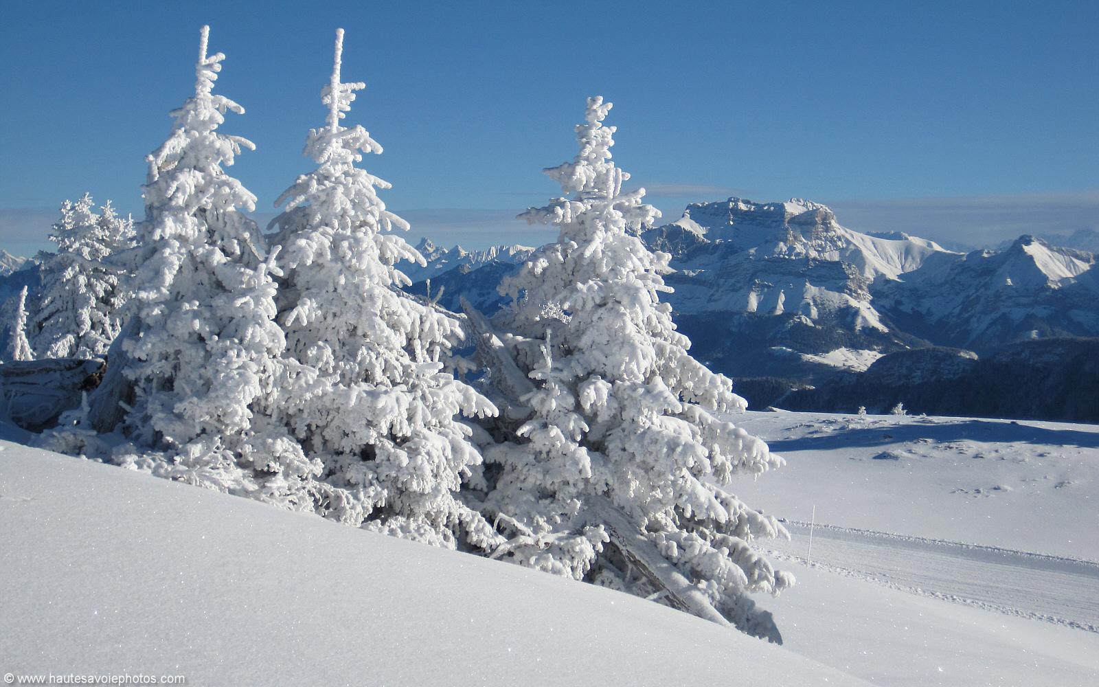 fond d 39 cran en 1600x1000 d 39 un paysage avec des sapins et la tournette sous la neige 12 c en. Black Bedroom Furniture Sets. Home Design Ideas